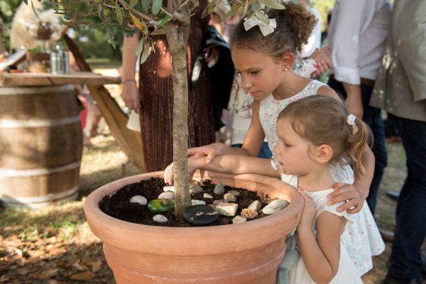 Voeux et galets au pied de l arbre pour le mariage nature de Caroline et Julien